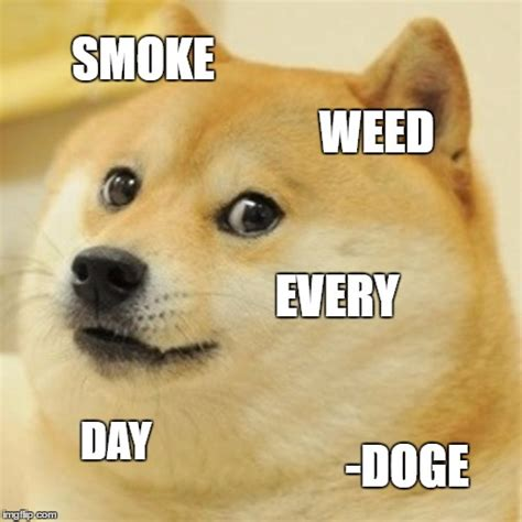 Doge Meme Generator - doge meme imgflip