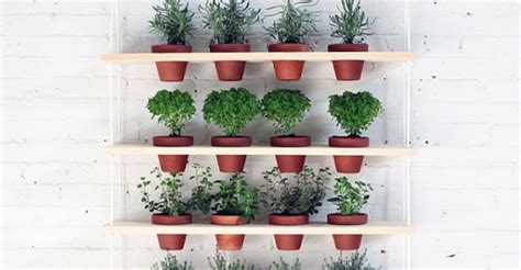 Herb Shelf | 24 indoor herb garden ideas to look for inspiration