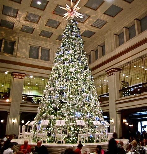 chicagoland holiday traditions kramer tree specialists inc