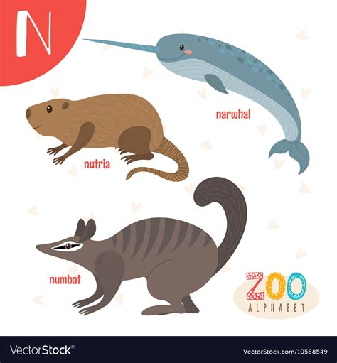 letter  cute animals funny cartoon animals  vector image