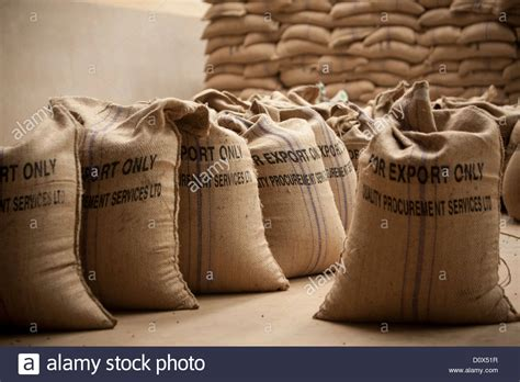 Beanbags South Africa Bags Of Coffee Beans Are Ready For Export At A Warehouse