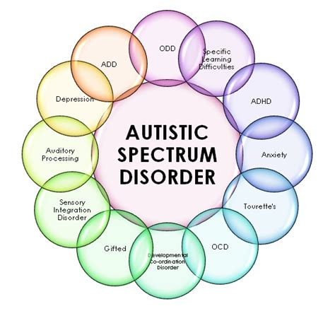 the politics of autism navigating the contested spectrum books image autism spectrum chart jpg community wiki wikia