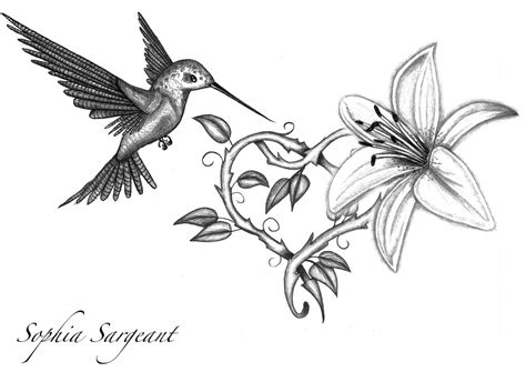 bird flower tattoo designs hummingbird flower pencil and in color
