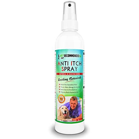 baking soda for dogs vet recommended anti itch oatmeal baking soda spray for dogs hypoallergenic