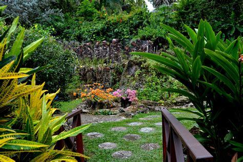 andromeda botanic gardens andromeda botanic gardens bathsheba barbados february 2012