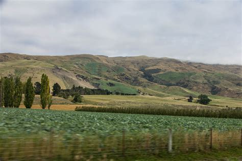 drive queenstown to dunedin drive through central otago nz cooking in tongues