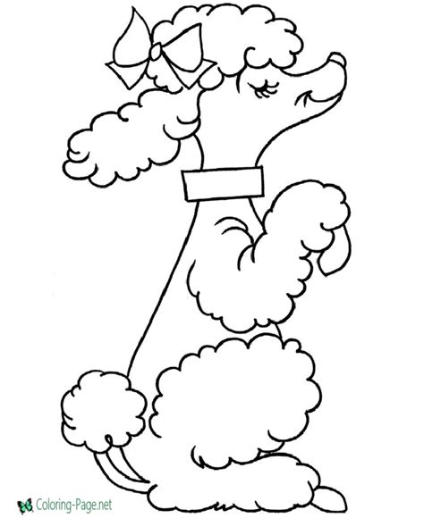 maltese coloring pages coloring pages dog coloring pages