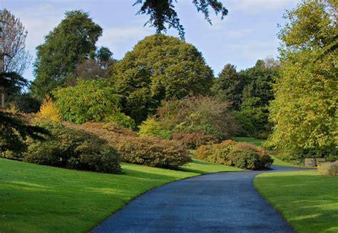 Royal Botanic Garden Edinburgh 169 Paul Harrop Geograph The Botanical Gardens Edinburgh