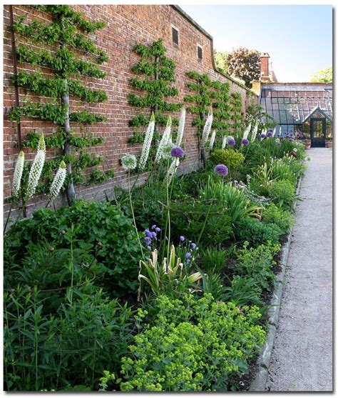 walled kitchen garden plants are the strangest january 2015