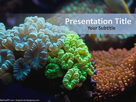 Free Underwater Coral Reef Powerpoint Template Download Free Powerpoint Ppt Coral Reef Powerpoint Template Free