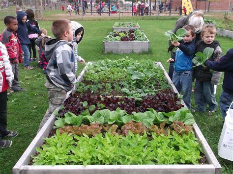 School Vegetable Garden School Vegetable Gardens Urban Seedling