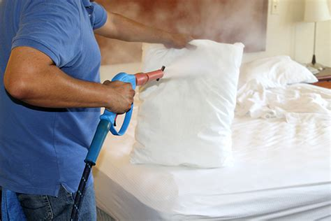 steamer to kill bed bugs eliminate bed bugs using eco friendly dry steam