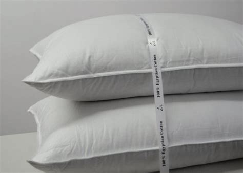Royal Hotel Goose Pillow royal hotel s goose pillow 500 thread count