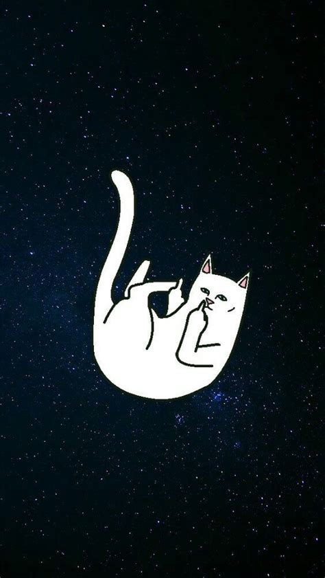 cat ripping wallpaper pin by mi on woahpaper pinterest wallpaper phone and