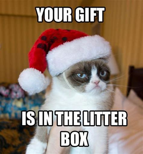 meme of the year grumpy cat