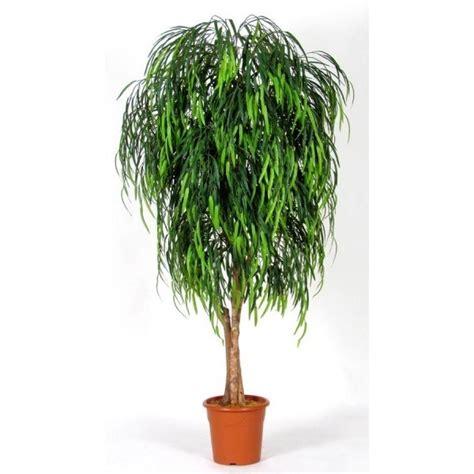 piante da interno piante finte da arredo piante finte arredare con le