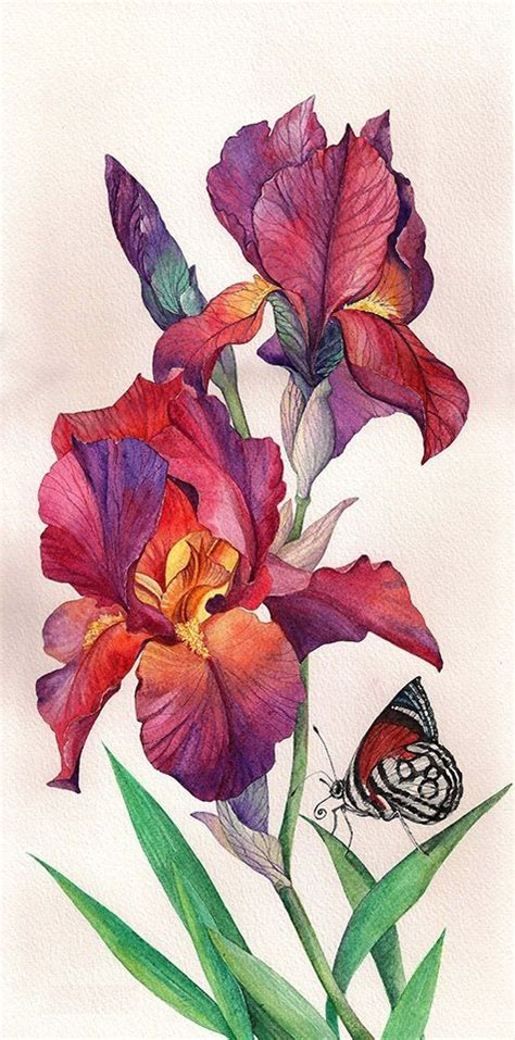 254 best paintings insects images on pinterest