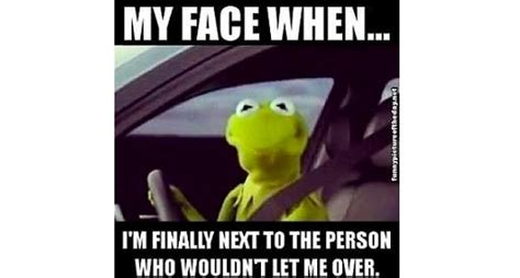 Kermit The Frog Meme Driving - kermit face memes