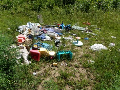 how to litter image gallery litter