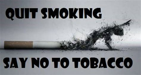 say no day quit say no to tobacco on world no tobacco day