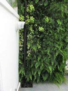 Bright Green Vertical Garden 1000 Images About Jardines Verticales On