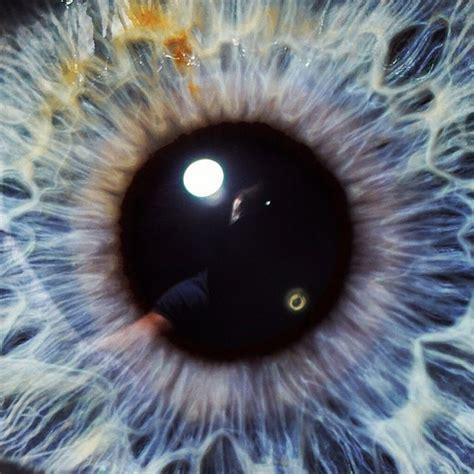 Blue And White Painting someone s blue eye ball iris blueeyes eyes macro 100