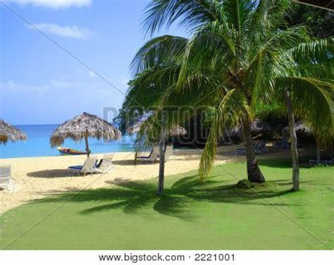 Tiki Hut Jamaica Jamaica Tiki Hut Stock Photo Stock Images Bigstock