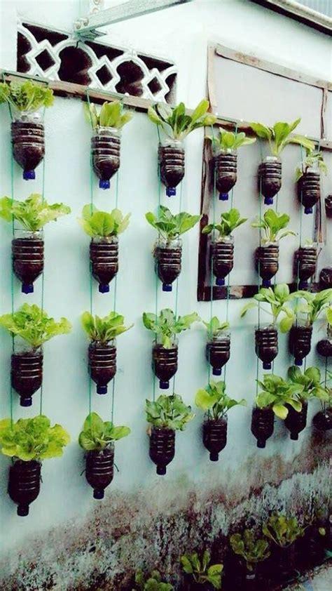 beautiful hanging plants ideas vertical garden diy