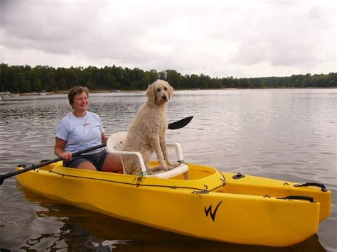 kayak for dogs on board wavewalk 174 stable fishing kayaks boats and
