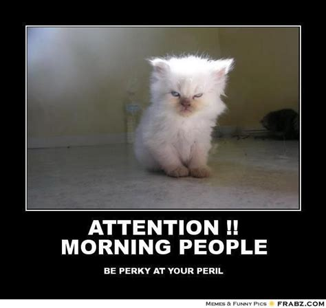Morning People Meme - attention morning people evil kitteh meme