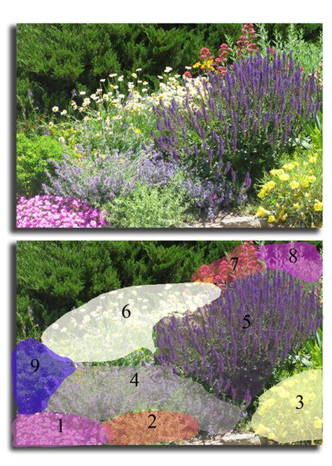 black forest landscape design studio all summer blooms