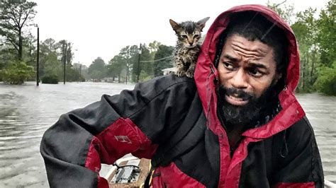 Hurricane Florence Photo Of Nc Man And His Cat Goes Viral