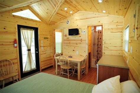 inside view of a deluxe studio cabin picture of