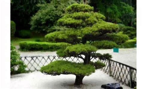Deco Jardin Japonais by Decoration Jardin Japonais