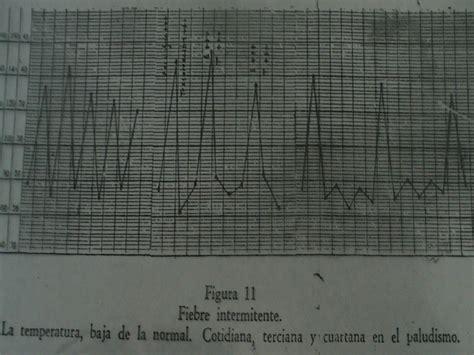oscilacion temperatura corporal clase 8 a temperatura corporal fiebre urp