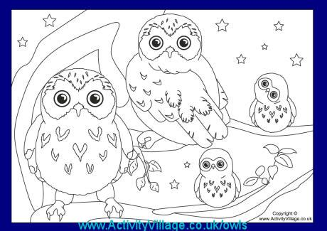 christmas coloring pages activity village more owls at activity village