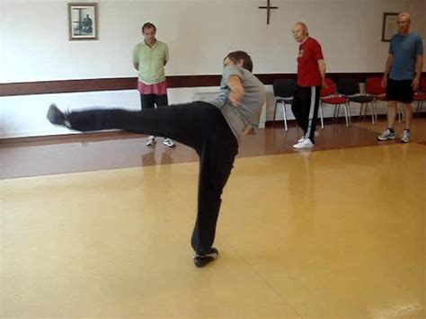 house kick pattern video clip series taijiquan against other martial arts