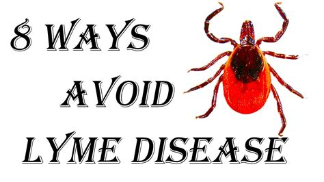 8 Ways To Avoid An Boyfriend by 8 Ways To Avoid Catching Lyme Disease How To Prevent