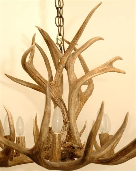 Stag Horn Chandelier 5 Point Stag Horn Chandelier At 1stdibs