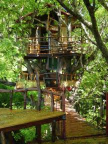 best treehouse best treehouse hotels in the world thrillist