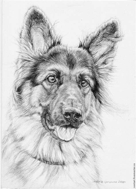 Cute German Shepherd dog drawing. | Animal drawings, Dog