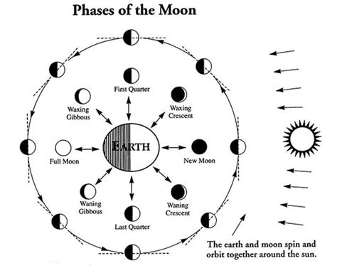 phases of the moon diagram for the world s catalog of ideas