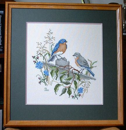 counted cross stitch birds eastern bluebird pair