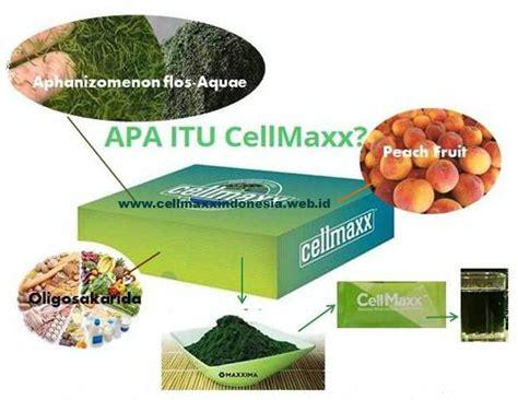 Apa Itu Fiforlif cellmaxx stem cell sel alami dalam tubuh membantu penyembuhan sel