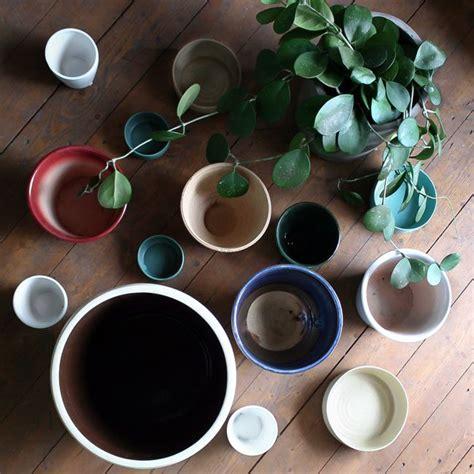 plant   pot  drainage holes indoor