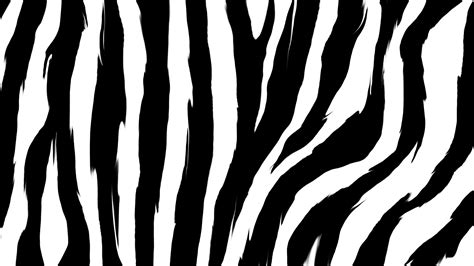 zebra pattern texture zebra print wallpapers archives hd desktop wallpapers