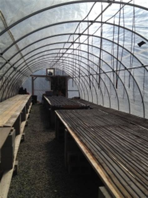 greenhouse bench heating greenhouse heating