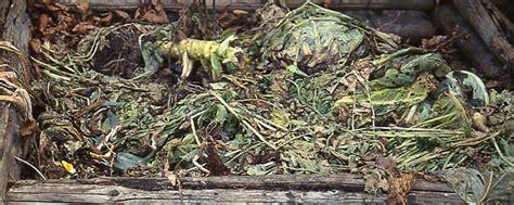 versand gartenbedarf gartenbedarf versand richard ward kompostplatz