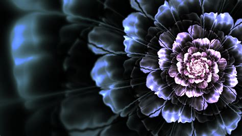 Flower Black black flower wallpaper