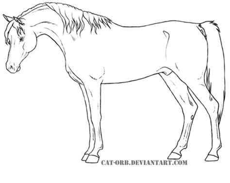 Arabian Coloring Pages realistic arabian coloring coloring pages